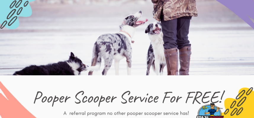 Get your pooper scooper service for free